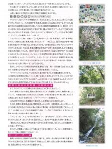 清流通信196章-2(元原稿)